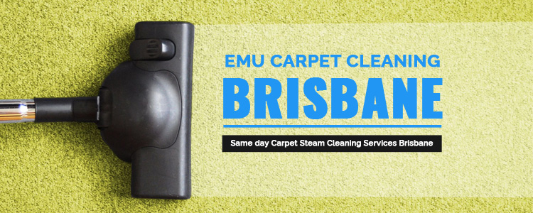 Cleaning Services Camira