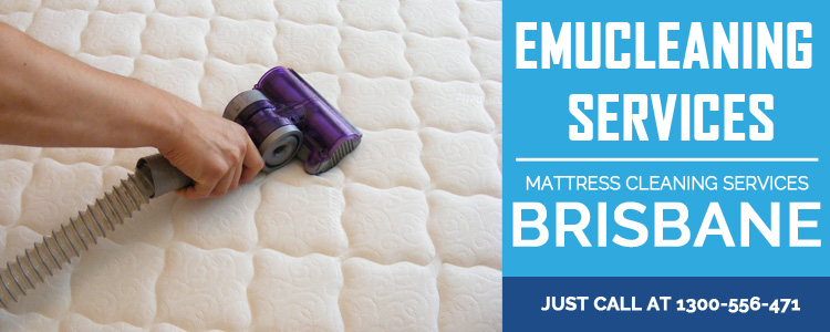 Bed Cleaning Doctor Creek