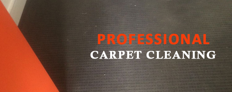 Carpet Cleaning Bulli