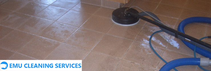 Ceramic Tile and Grout Cleaning Tangalooma