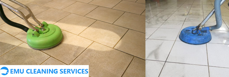 Tile and Grout Cleaning Lilyvale