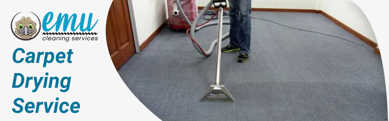 Carpet Drying Service Brisbane